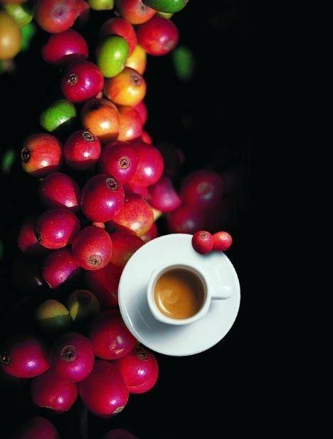 Kosmetyki z kofeiną